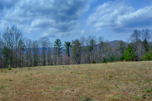 Land for sale in Albemarle County Va