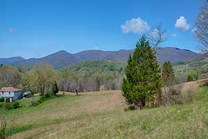 Free Union Virginia Land for sale