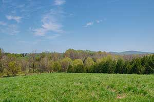 Large Virginia Farm for Sale