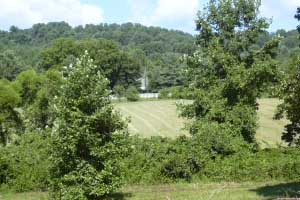 Madison County Virginia Farm land