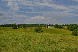 Madison County Virginia Cattle Farm for sale