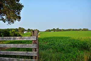 Virginia Farm for sale in Fluvanna County