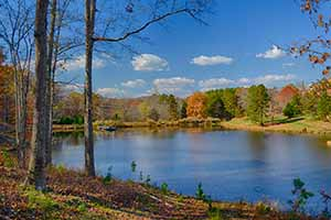 Albemarle and Louisa  County Land for sale