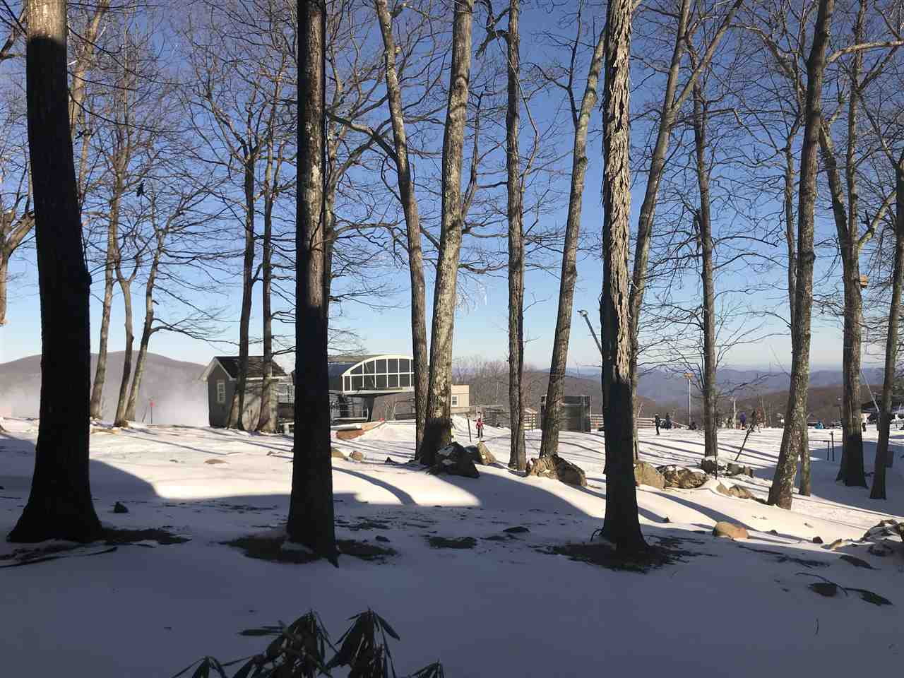 319 Dobie Condos, Wintergreen Resort